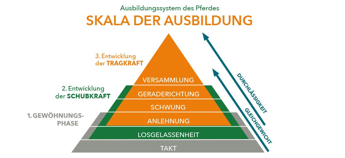 Skala der Ausbildung PDF